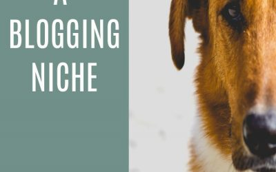 How to Choose a Blogging Niche that is Perfect for you. 10 Power Tips