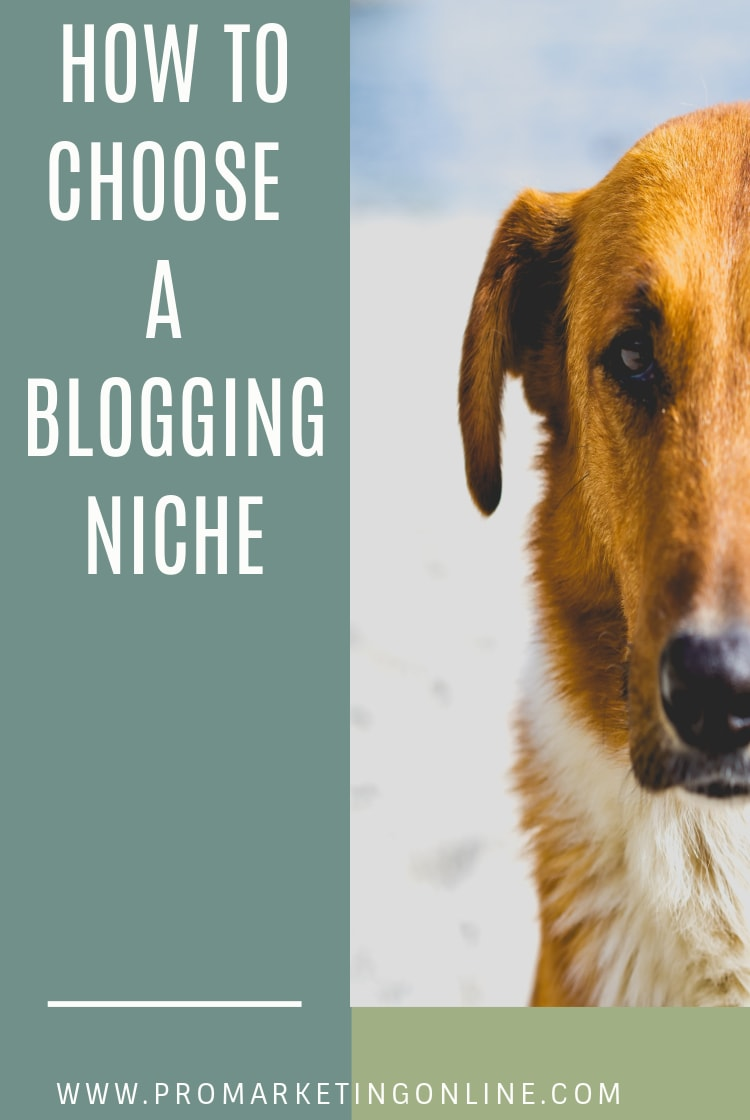 Tips on how choose a blogging niche that suits your business.